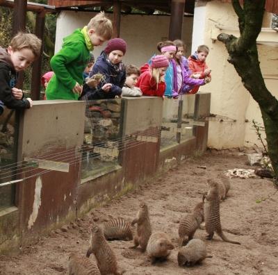 JAHRESÜBERBLICK - Kinderferienbetreuung im Zoo