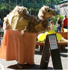 """Träume werden wahr – bei der """"Traumnacht im Zoo"""" am 8. Juni"""