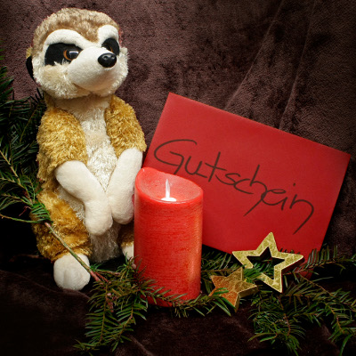 Tolle Weihnachtsgeschenk-Ideen für Zoofans