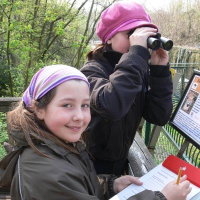 """Sommerferienangebot der Zooschule - """"Tierisch viel Spaß"""""""